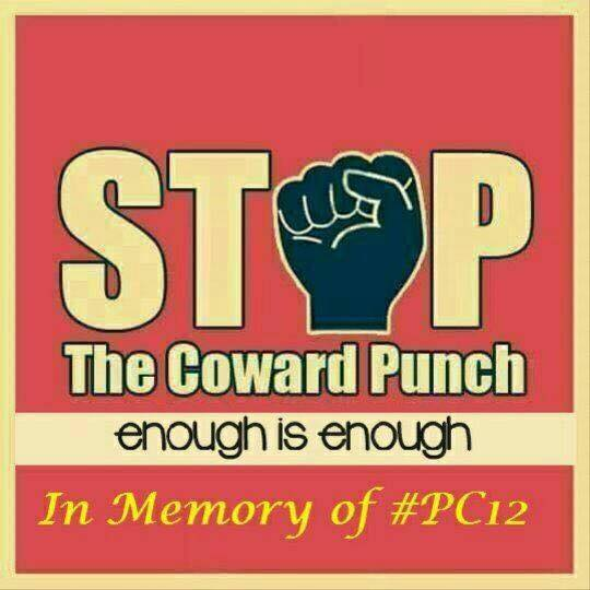 stop the coward punch 2016